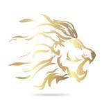Bergamo Lions